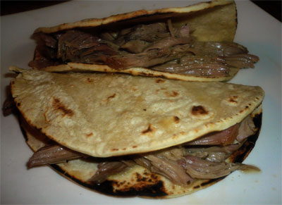 Turkey carnitas in corn tortillas